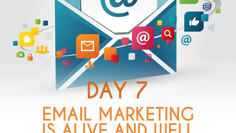 Email Marketing Is Alive and Well (Day 7